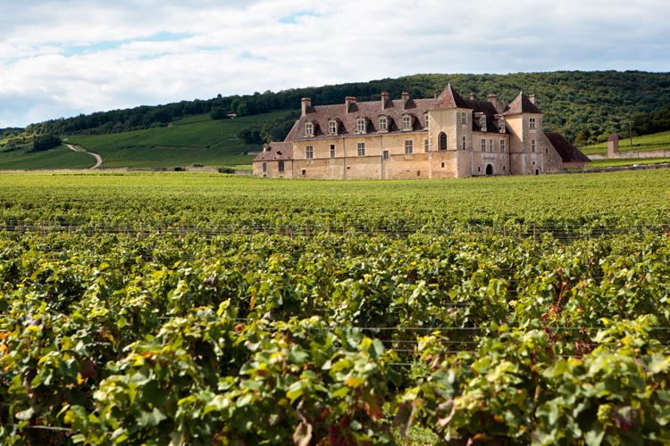 Chateau Clos Du Vougeot, Burgundy, France