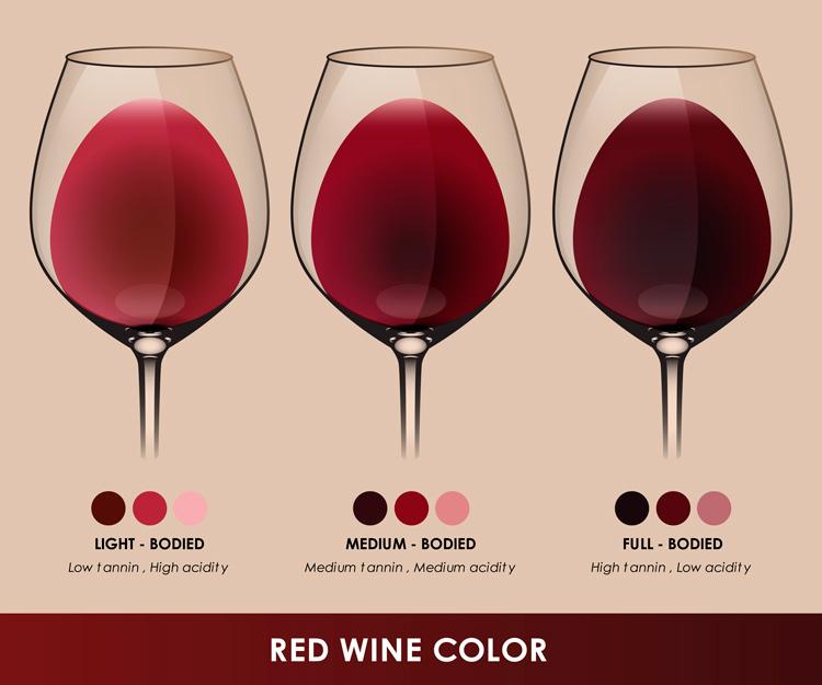 Wine body explained